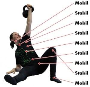 Gelenke Mobil Stabil